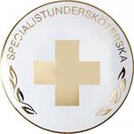 196 Specialistundersköterska Vård brosch